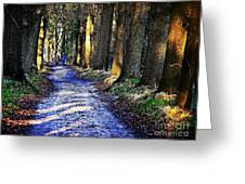 Walk On A Cold Autumn Day Greeting Card