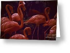 Walking Flamingos Greeting Card