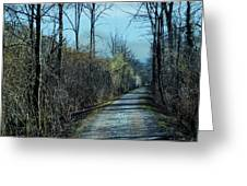 Walking In The Shadows Greeting Card