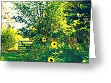 Walking On Sunshine Greeting Card
