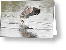 Walking On Water Greeting Card