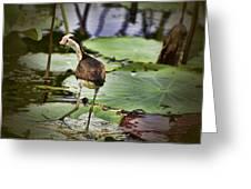 Walking On Water V3 Greeting Card