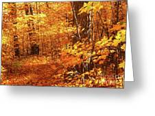 Walking Through The Maple Trees  Greeting Card