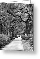 Walking Through The Park In Black And White Greeting Card by Suzanne Gaff