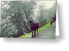 Walking Time Greeting Card