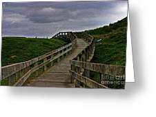 Walkway On Phillip Island Greeting Card