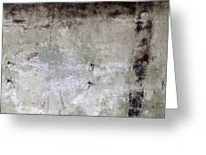 Wall Texture Number 11 Greeting Card