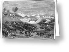 War Of The Pacific, 1879-1884 Greeting Card