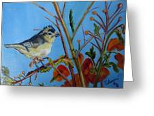 Warbling Verio Greeting Card
