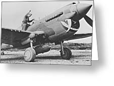 Warhawk P40 1943 Greeting Card