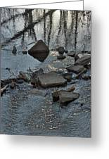 Water And Woods Greeting Card