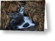 Water Art Greeting Card