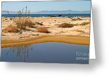 Water By The Ocean Greeting Card