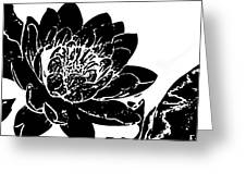 Water Lily Black And White Greeting Card