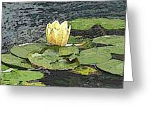 Water Lily Cometh Greeting Card