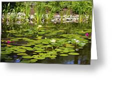 Water Lily Garden 2 Greeting Card