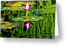 Water Lily Pond Garden Impressionistic Monet Style Greeting Card