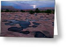 Water Puddled In The Esplanade, A Rock Greeting Card