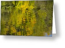 Water Reflection Abstract Autumn 1 D Greeting Card
