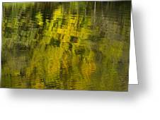 Water Reflection Abstract Autumn 1 E Greeting Card