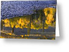 Water Reflections With A Rocky Shoreline Greeting Card by Carson Ganci