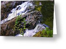 Water Running Down Ledge Greeting Card