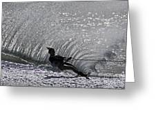 Water Skiing 3 Greeting Card