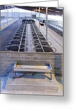 Water Trough And Cattle Cubicles Greeting Card