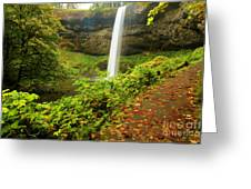 Waterfall Along The Trail Greeting Card