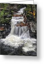 Waterfall At Ricketts Glen Greeting Card