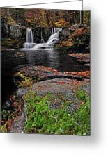 Waterfall Childs State Park Greeting Card