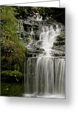 Waterfall Flows Greeting Card