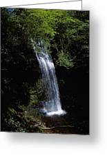 Waterfall In A Forest, Glencar Greeting Card