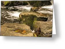Waterfall In Fall Greeting Card