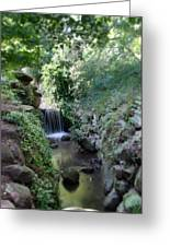 Waterfall In Prospect Park Greeting Card