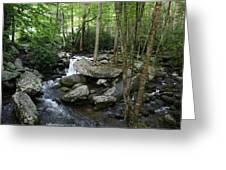 Waterfall In Stream Greeting Card