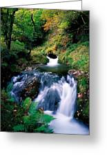 Waterfall In The Woods, Ireland Greeting Card