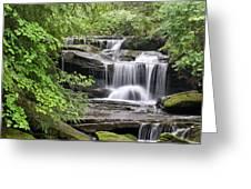 Waterfall Near Mabbitt Spring Greeting Card