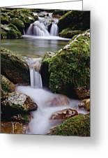 Waterfall, Peter Lougheed Provincial Greeting Card