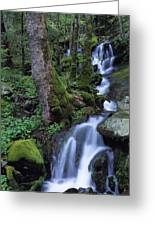 Waterfall Pouring Down Mountainside Greeting Card