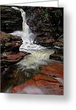 Waterfall Ricketts Glen Greeting Card