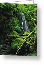 Waterfall, Sloughan Glen, Co Tyrone Greeting Card
