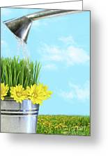 Watering Flowers And Grass For Spring Greeting Card