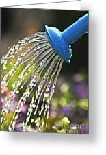 Watering Flowers Greeting Card by Elena Elisseeva