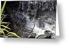 Watersplash In Sunlight Greeting Card