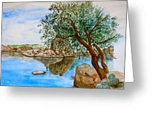 Watson Lake Prescott Arizona Peaceful Waters Greeting Card by Sharon Mick