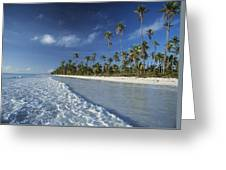 Waves Lapping Shore Of Beach With Palm Greeting Card