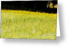 Waves Of Yellow Greeting Card