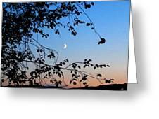 Waxing Crescent Moon Greeting Card