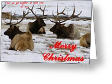 We All Got Together Christmas Greeting Card